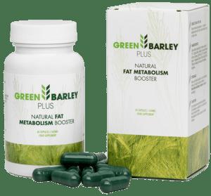 zielony jęczmień na co szkodzi