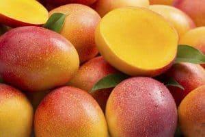 owoce afrykańśkiego mango