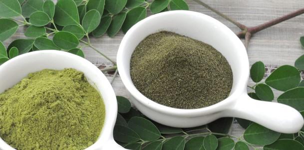 sproszkowane liście moringa