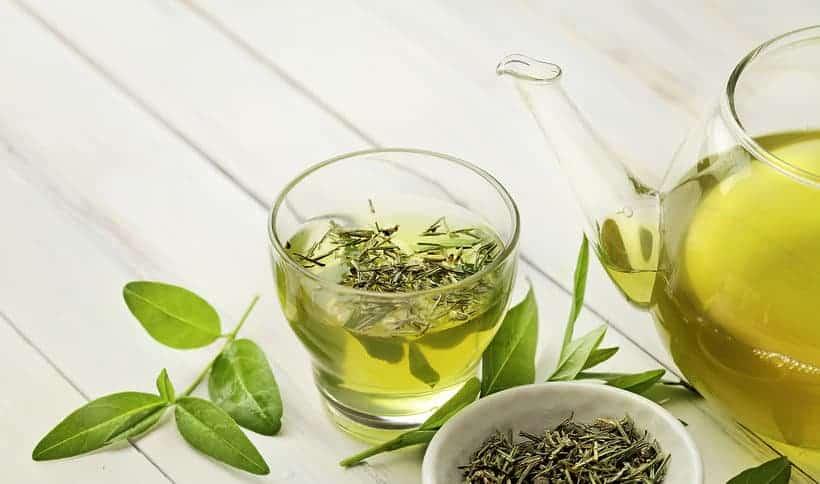 filiżanka zielonej herbaty