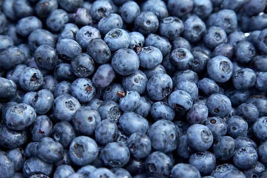 Jagody Acai (Acai Berry) – właściwości zdrowotne i skuteczność na odchudzanie