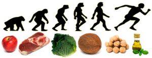 produkty spożywcze i schemat rozwoju człowieka