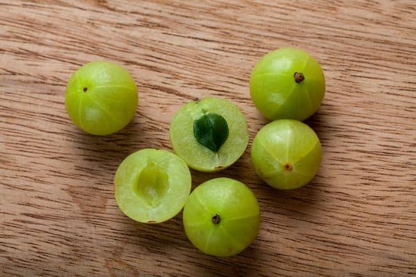 owoce amli, agrestu indyjskiego