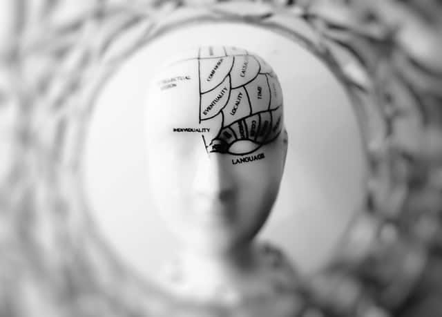 schemat ludzkiej głowy