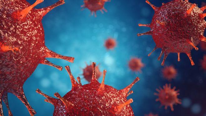 wirusy w organizmie