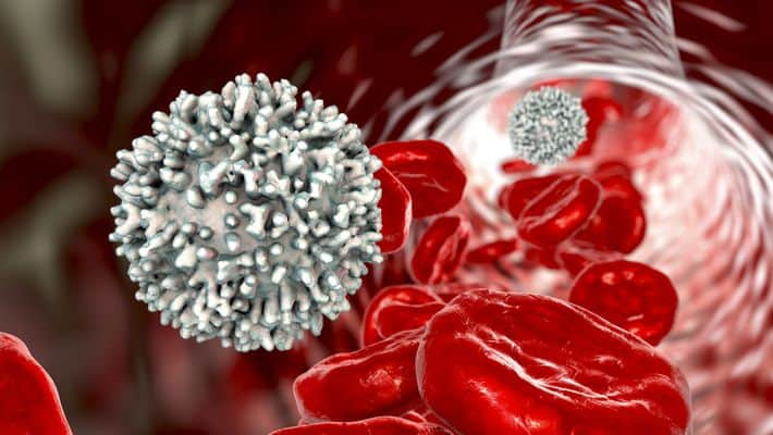 czerwone ciałka krwi i antyciała