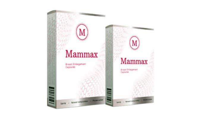 Mammax