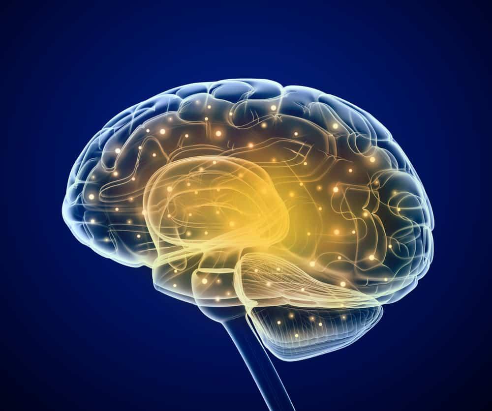 aktywny mózg