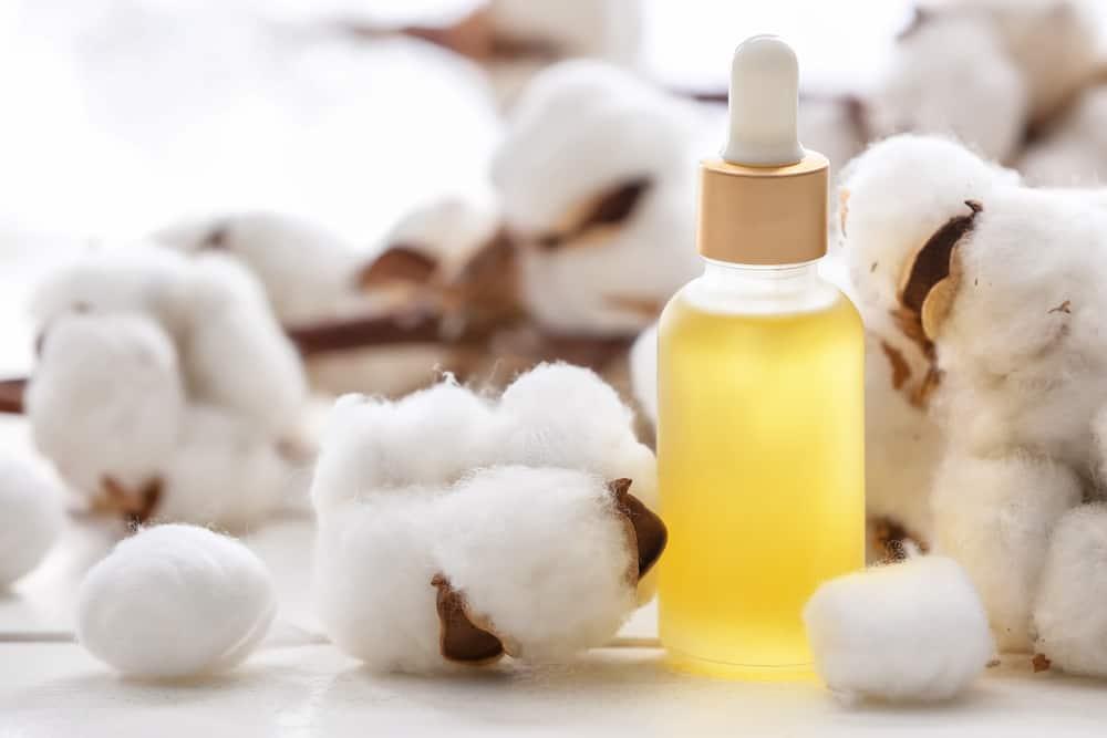 olej bawełniany
